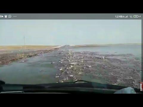 Большая вода пришла в Казахстан. Власти бездействуют Дороги ушли под воду! ОСА Костанай