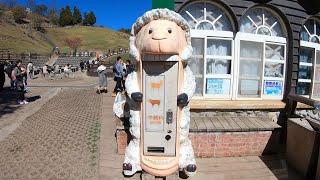 Vending Machine For Sheeps