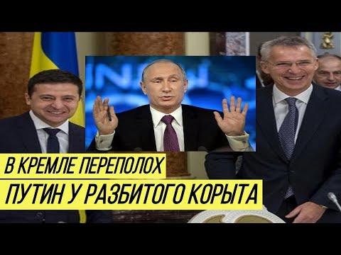 Крупное поражение Путина: Украина в НАТО, Кремль в шоке