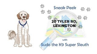 Sneak Peek with Sudo the K9 Super Sleuth - 20 Tyler Rd, Lexington