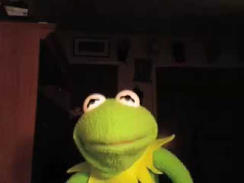 "ADAM RAY: Kermit's Reaction to his Reaction Video of ""2 ..."