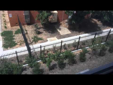 Пенсия в Австралии - Selfmadetrip