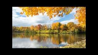 Creation Energies: Bank Your Love Energies - October 20, 2014