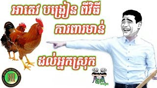 Troll Cambodia, អាតេវបង្រៀន ពីវិធី ការពារមាន់ ដល់អ្នកស្រុក
