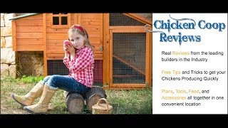 Diy Chicken Coop Plans - Free Vs Paid Chicken Coop Plans