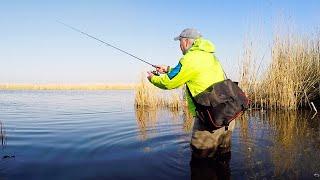 ОКУНЬ ДУРЕЕТ ПОСЛЕ НЕРЕСТА Рыбалка на МикроДжиг и Отводной с берега