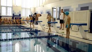 видео: Юный пловец 2014