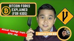 Bitcoin Forks! (for kids)