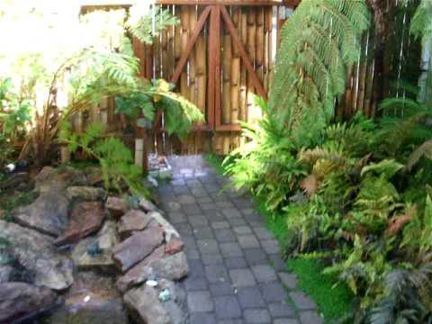 Small Fern And Stream Garden YouTube