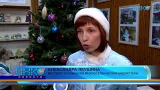 Театрализованное представление к Новому году в Луховицкой межпоселенческой библиотеке.