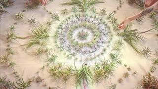 Медитация с Архангелите за отказване от цигари, алкохол, наркотици и др.