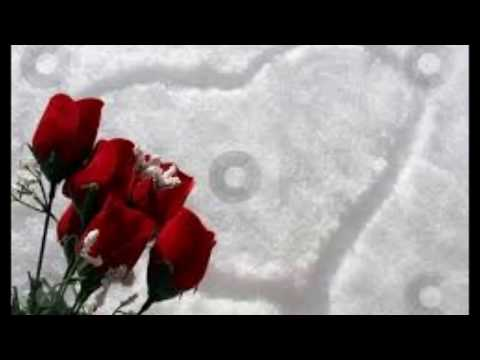 When The Snow Is On The Roses - Ed Ames