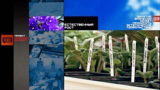 Естественный рост(, 2009-10-15T14:15:21.000Z)
