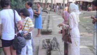 Шокирующая Азия. Часть 2.mp4(http://1tv.dvn.ru/download/film/5278 Качай и смотри! Вы узнаете о массовых подземных захоронениях, ужасных болезнях, древни..., 2011-02-03T15:19:21.000Z)