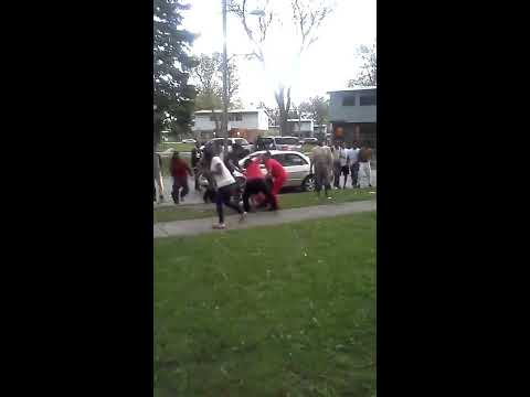 A fight breaks out in Inkster in the Gardens