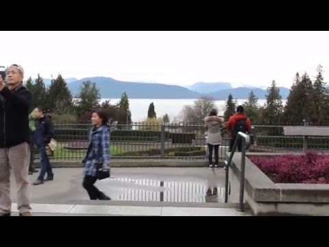 University of British Columbia (UBC) Walk-through  2016 - Middle of Campus - Walking in Vancouver