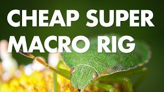 How I Built My Own Super Macro Rig for $230