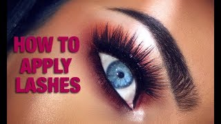 How to Apply False Eyelashes for Beginners | Ultimate Guide to False Lashes