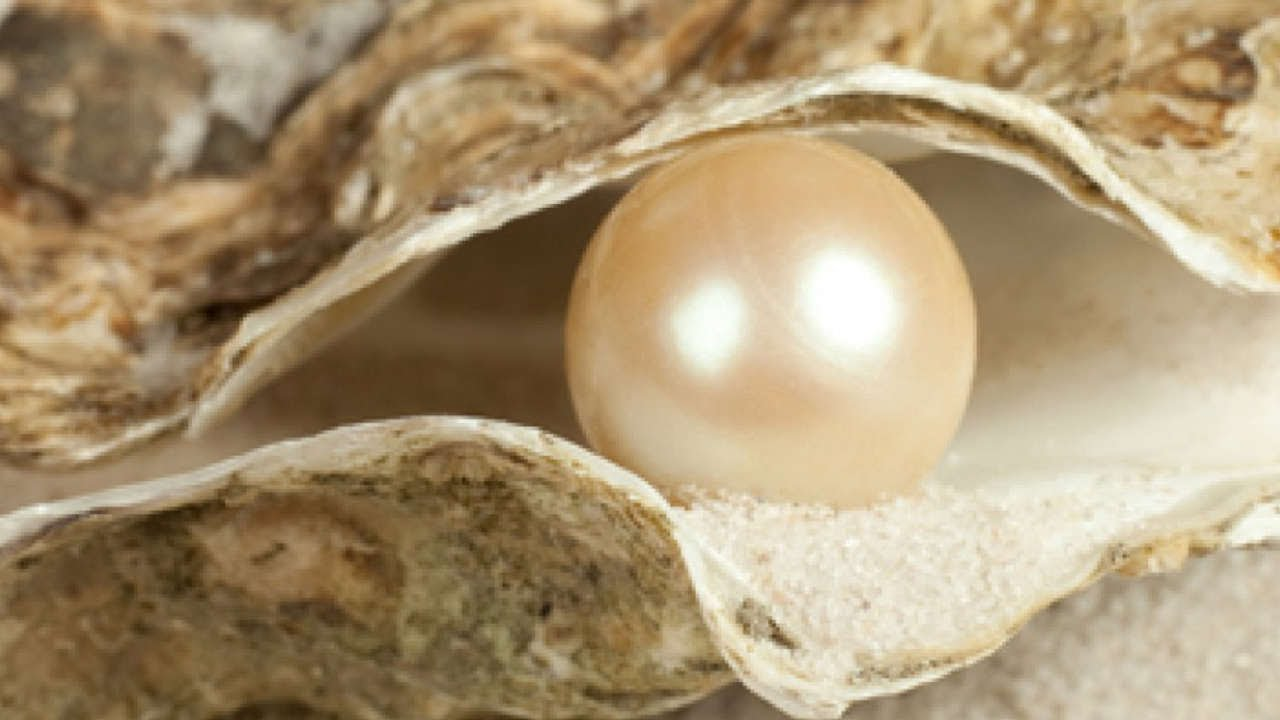 What is the pearl of great price? (The Parables of Jesus) - YouTube