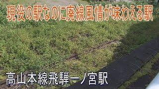 【駅に行って来た】高山本線飛騨一ノ宮駅は草に埋もれた廃線がある駅 thumbnail