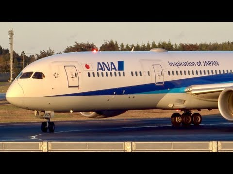 Beautiful Sunset with Triton Blue!! [JA839A] ANA BOEING787-9 NH177 Dpt.SEA/Narita