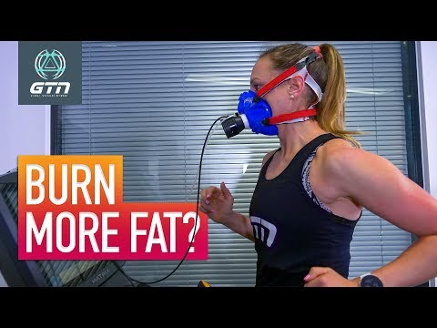 What Is The Best Intensity To Burn Fat? | How To Use Body Fat As An Energy Source
