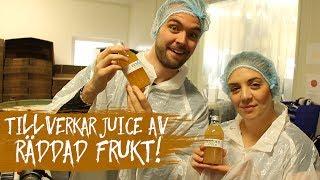 Gör äppelmust på Rescued Fruits | Tim & Danny testar jobb