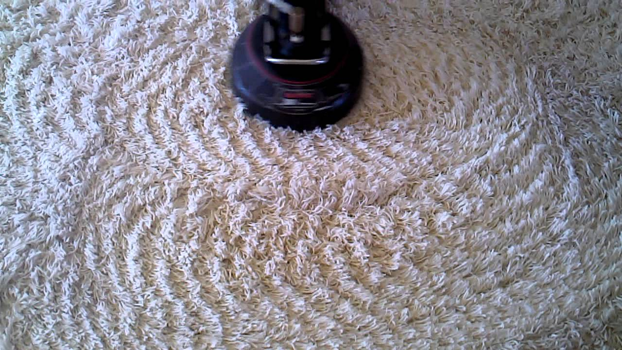 Cleaning Of White Shag Carpet
