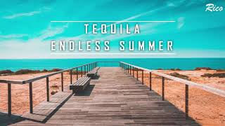 [Vietsub + Lyrics]Tequila - Endless Summer