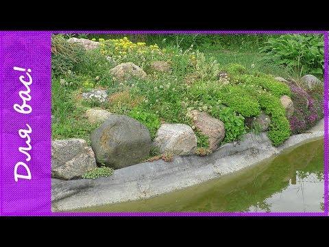 В гостях у тезки 4. Декоративный пруд и альпийская горка на даче. Садовые композиции  на участке.