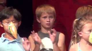 Radnor Day Camp 2015 (Tyler in the camp's performance)