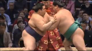 Like sumo? Join the sumoforum at www.sumoforum.net!!