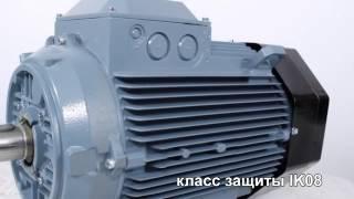 ABB M2AA 200 MLA4 исполнение 1081(Электродвигатель асинхронный ABB M2AA 200 MLA4: мощность: 30 кВт; номинальная скорость вращения: 1500 об./мин.; габарит..., 2013-11-10T10:01:43.000Z)
