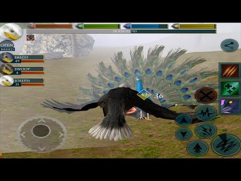 🦅Furious Eagle VS 🐢Angry Snapping Turtle And Peacock King Boss Fight, Ultimate Bird Simulator,