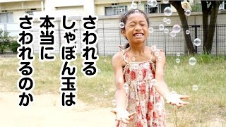 木にくっついても割れない⁉︎シャボン玉とはしゃぐミーミが可愛い♡Let's play with soap bubbles! thumbnail