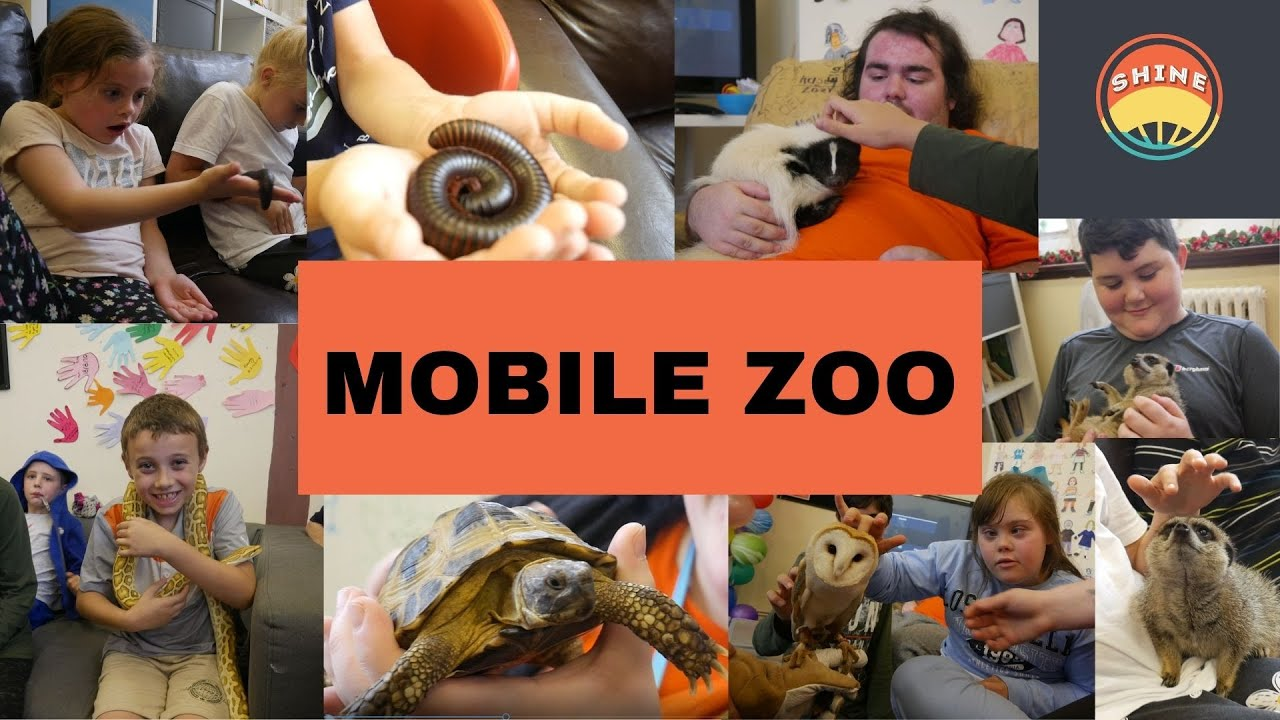 MOBILE ZOO MONTAGE