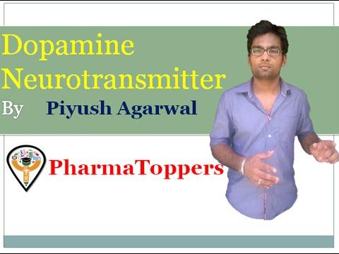 Dopamine Neurotransmitter