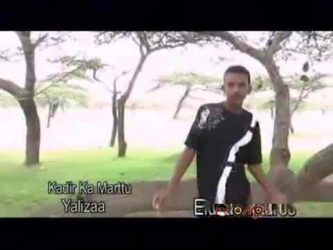 Kadir Martu - Yaa Liizaa [Oromo Music]