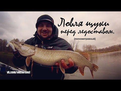 когда ловить щуку весной на спиннинг в ленинградской области