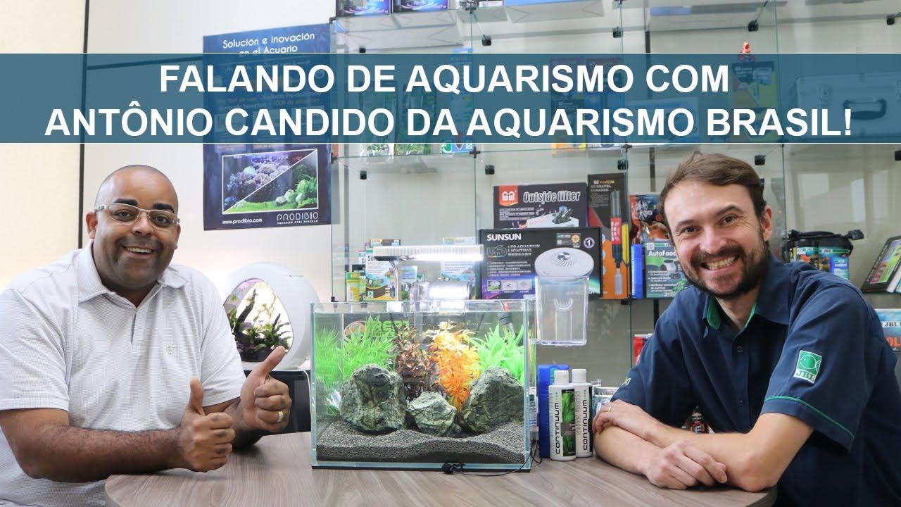 Falando de Aquarismo com Antônio Candido do canal Aquarismo Brasil!