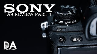 Sony a9 (in late 2019) Review: Part 1 | 4K