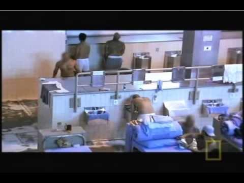 Lockdown-Inmate University