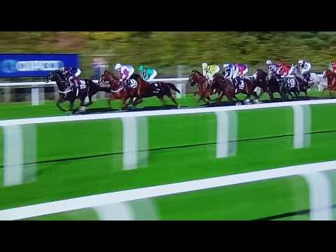 Roaring Lion-Ascot Group 1-Champions Day