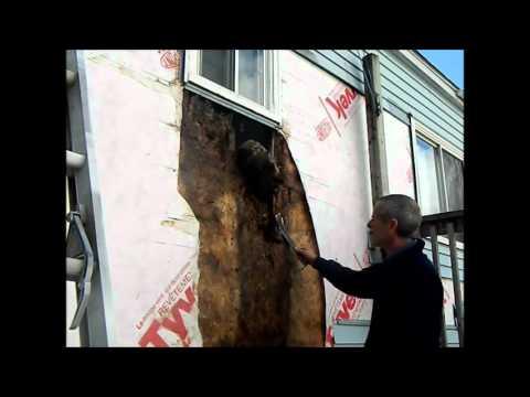 Water damage from window frame leak