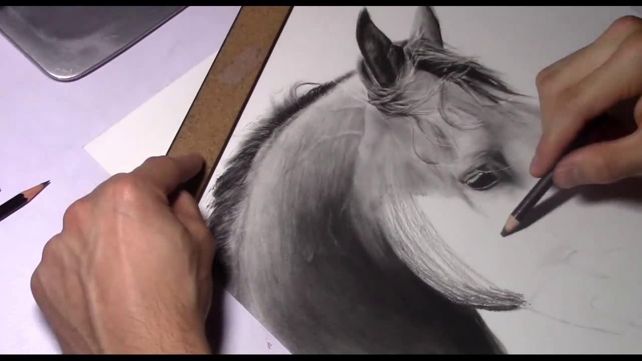 Como Desenhar Um Cavalo Realista Youtube