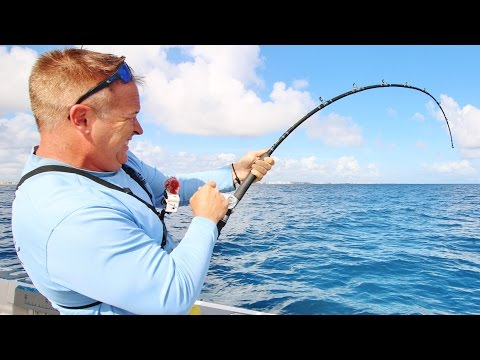 Florida Offshore Saltwater Fishing for WRECK MONSTERS