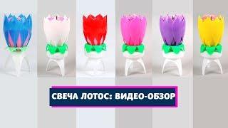 Свеча ЛОТОС: видео-обзор