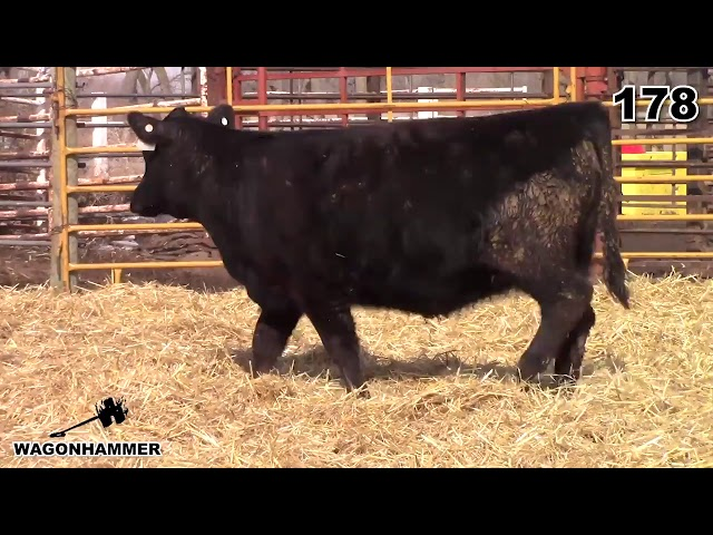 Wagonhammer Ranches Lot 178