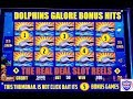 🐬 DOLPHINS GALORE 🐬 BONUS FEATURES - LIGHTNING LINK -MAGIC PEARL