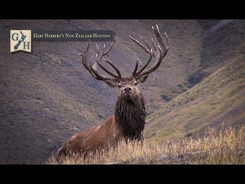 2015 Gary Herbert's New Zealand Hunting Promo